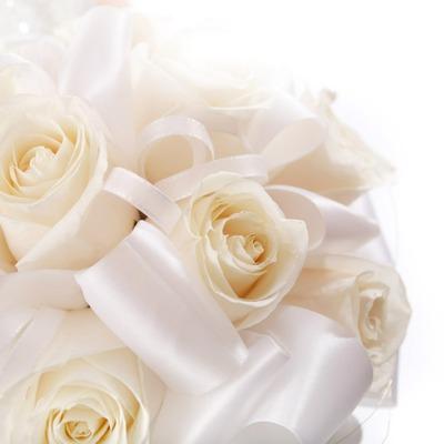 нежно-кремовые свадебные розы  № 1322995  скачать
