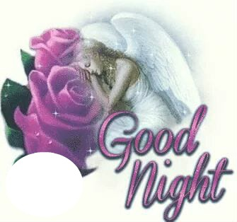 Image result for Night Angels