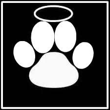 Empreinte Patte De Chien photo montage 1 photo empreinte de patte de chien décédé 4 cadres