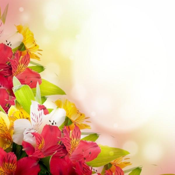 Картинки для поздравлений цветы 21