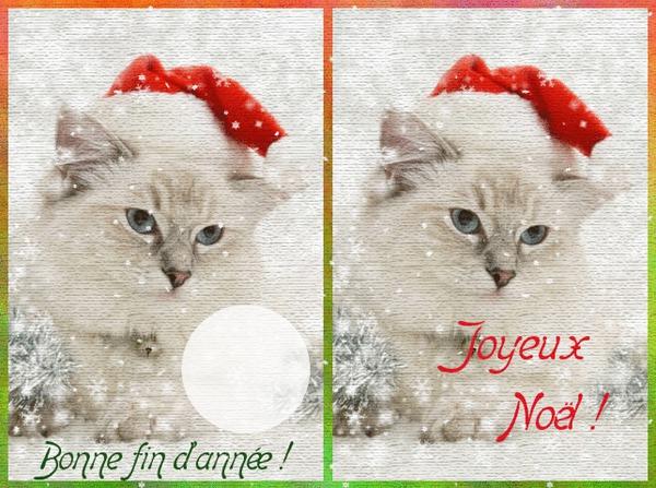 Montage photo joyeux noel pixiz for Imprimer carte de voeux gratuite