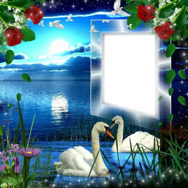 foto de Montage photo Cadre nature Pixiz