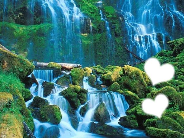 tropic cascade