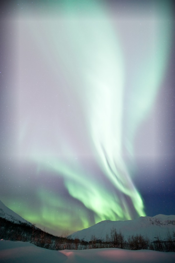 northern lights essay questions A northern light questions and answers the question and answer sections of our study guides are a great resource to ask questions, find answers, and discuss literature home a northern light q & a.