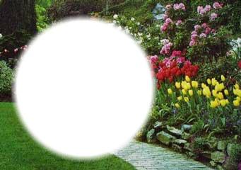 Montaje Fotografico Jardin De Flores Pixiz Utiliza tu programa de retoque fotográfico preferido para abrir estos archivos una colección de 6 fondos buenas noches en alta calidad, listos para que incluyas tu foto con tu programa de retoque. pixiz