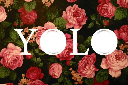yolo the motto that has gone 10 phrases you can say instead of yolo you're too old, not hip enough, or you straight-up loathe the phrase yolo — and with good reason here are 10 alternatives to the popular saying.