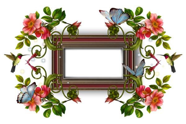 flowers photo montages [p  8/10] - Pixiz