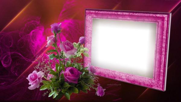 montage photo cadre fleurs rose pixiz. Black Bedroom Furniture Sets. Home Design Ideas