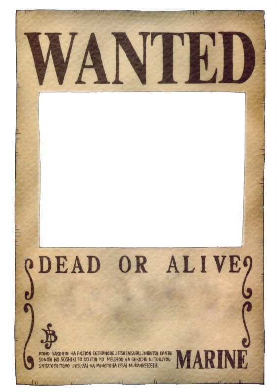 Photo montage Wanted One Piece - Pixiz