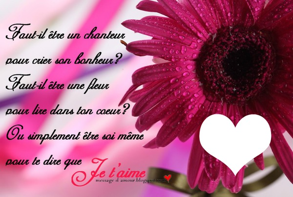 Montaje Fotografico Fleurs D Amour Pixiz