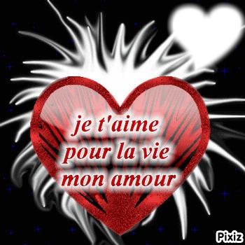 фотомонтаж Je Taime Pour La Vie Mon Amour Pixiz