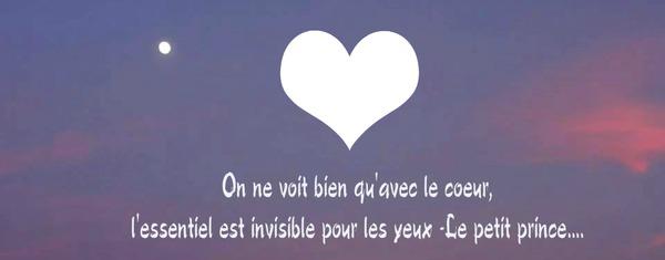Montage Photo Couverture Facebook On Ne Voit Bien Qu Avec Le Coeur