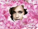 Розовые лепестки цветка