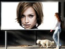 Billboard Female Dog