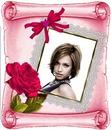 羊皮紙のバラ