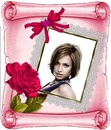 Roses Pergamin