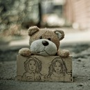 Teddy bear holding a sign