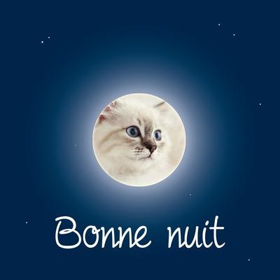 Луна през нощта