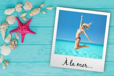 Polaroid avec coquillages et étoile de mer