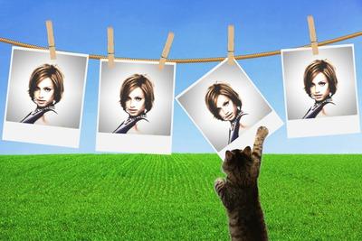 4 ripustettavaa polaroidia Cat