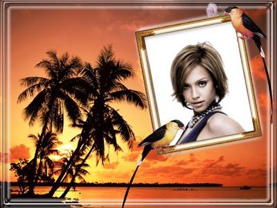 Paglubog ng araw sa beach