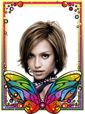 Multicolour butterfly Stained glass window