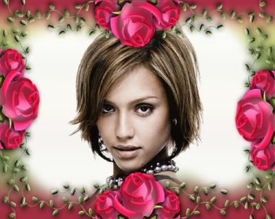 Ruže pupoljci