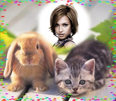 Kanin og kattunge