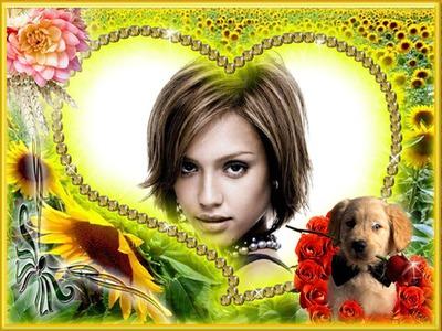 Heart ♥ λαμπραντόρ κουτάβι Λουλούδια