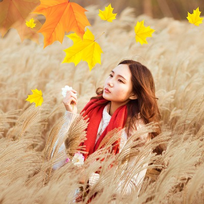 Add autumn leaves to your picture