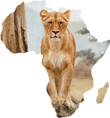 Āfrika Caurspīdīgs PNG