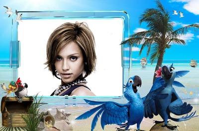 Parrot Rio Beach
