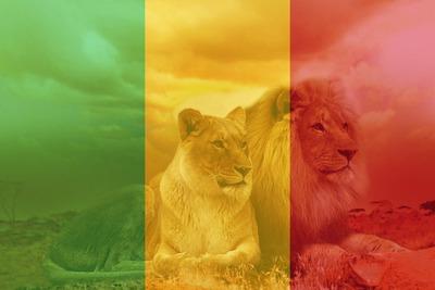 Mali Bayrağı