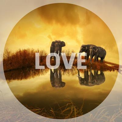 Apskritimas Meilė