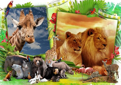 Животни от джунглата