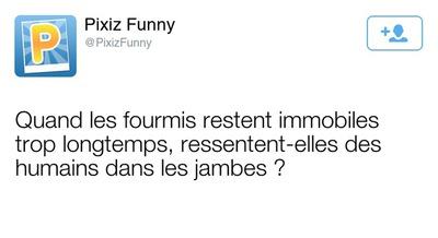 Tweet Fausse publication Tweeter personnalisable