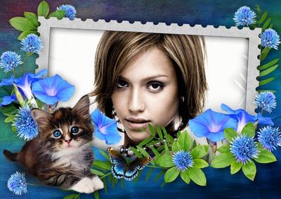 Katten med en sommerfugl i blomsterne