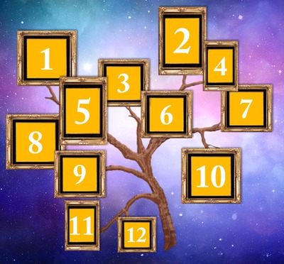Obiteljsko stablo s 12 fotografija