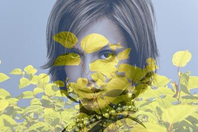 Fondu sur feuilles vertes