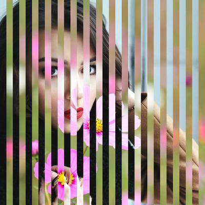 Fusión de 2 fotos con líneas verticales