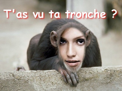 Majmunovo lice