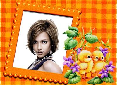 Vichy oranssi Chicks