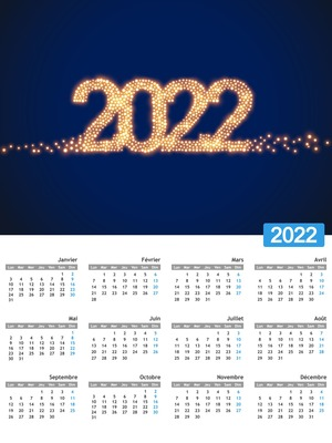 Annual calendar with customizable photo