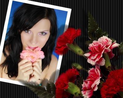 Kwiaty Goździki India