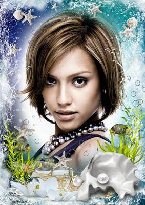 Sea Fish Shellfish