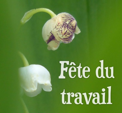 May 1st sprig of lily of the valley with bells