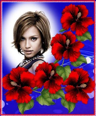 Hibiscus fiori