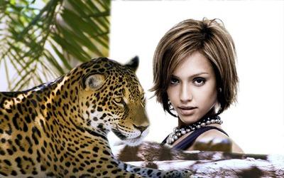 Leopardo pantera