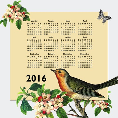 Calendar 2016 natural ibon at butterfly