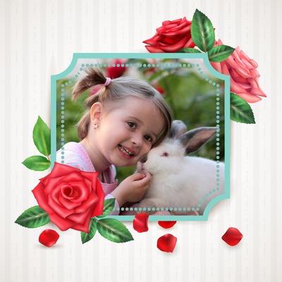 ブルーフレームと赤いバラ